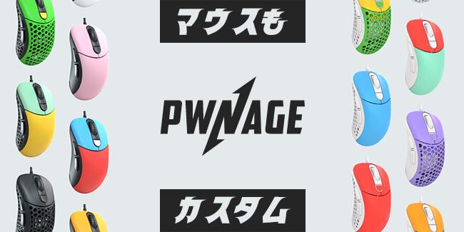 Pwnage(ポウネイジ)
